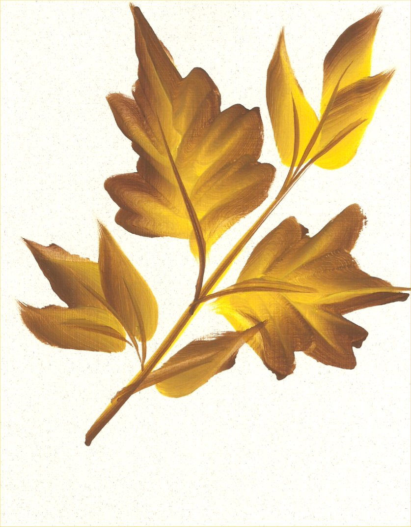 AutumnBranch.jpg
